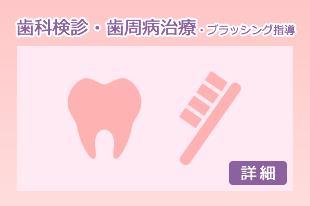 歯科検診・歯周病治療・ブラッシング指導
