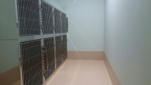 タバサ動物病院ワンちゃん用入院室